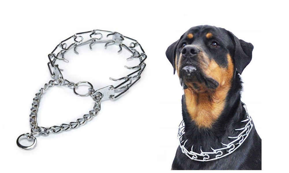Best Dog Pinch Collar