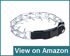 Coastal Easy Dog Prong Collar Review