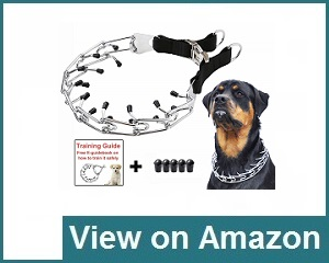 Mayerzon Dog Prong Training Review