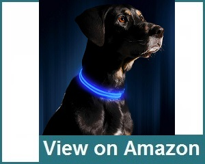 Illumiseen Usb Rechargeable Collar Review