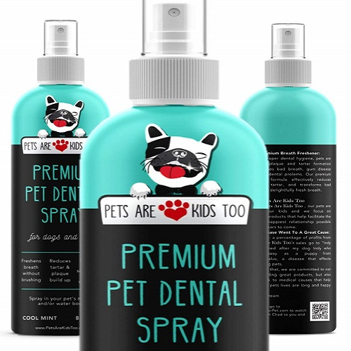 Premium Pet Dental Spray Review