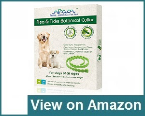 Arava Flea & Tick Prevention Collar Review