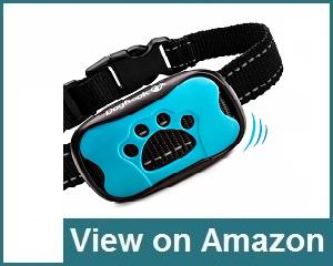 DogRook Dog Bark Collar Review