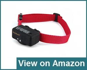 PetSafe Basic Control Collar Review