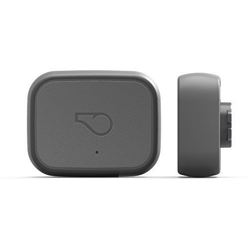 Whistle 3 GPS Pet Tracker Review