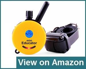 Educator E-Collar Review