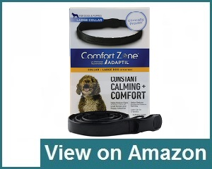 Comfort Zone Calming Collar Review