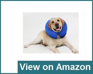 E-KOMG Dog Cone After Surgery Review