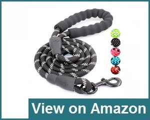 Baapet 5 FT Collar Review