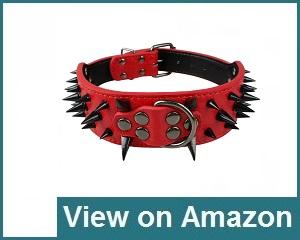 Berry Pet Collar Review