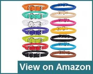 CollarDirect Collar Review