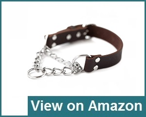 Mighty Paw Leather Collar Review