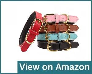 Aolove Collar Review