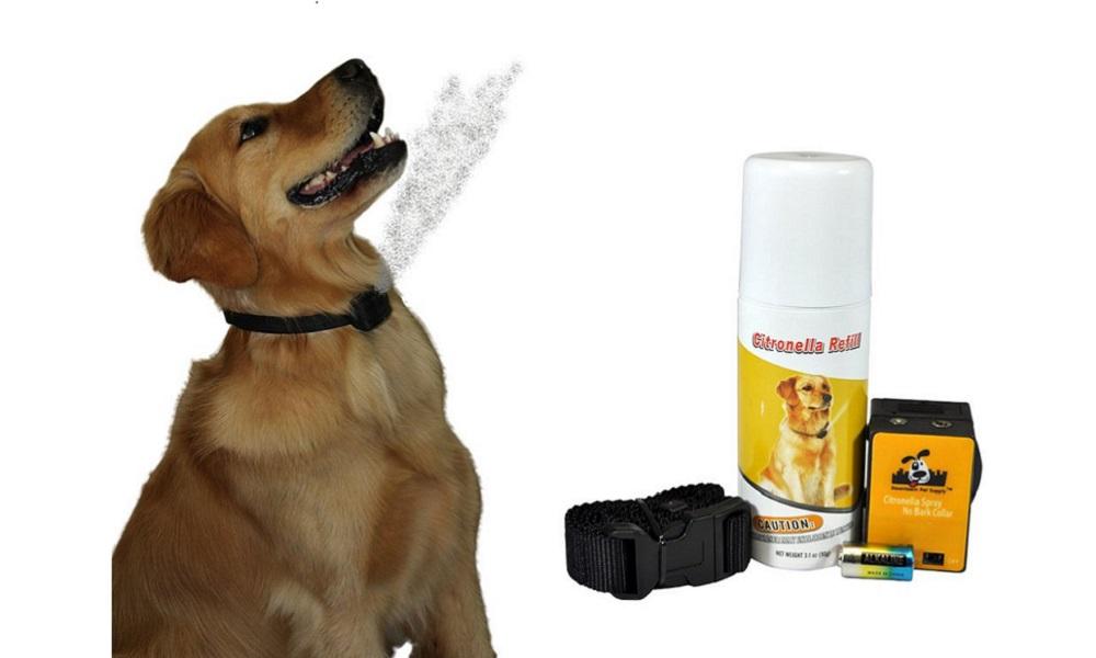 Best Citronella Dog Bark Collar