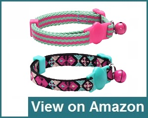 Blueberry Pet Collar Review