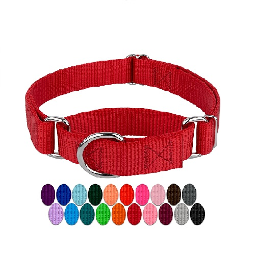 Country Brook Petz Martingale Dog Collar Review