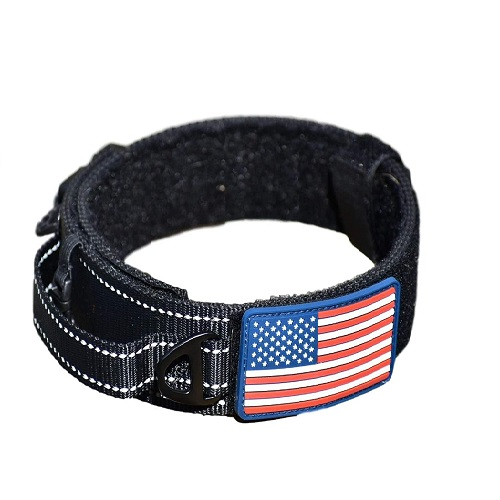 Diezel Wide Dog Collar Review