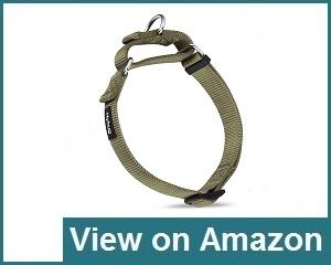 Hyhug Pets Collar Review