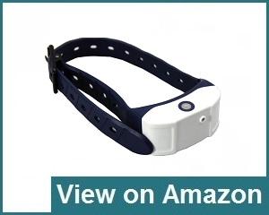 JK Tech Collar Review