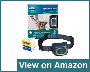 PetSafe Dog Collar Review