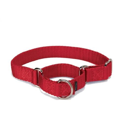 PetSafe Martingale Dog Collar Review