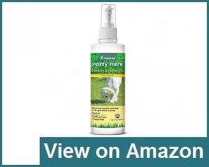 Pooch Pads Spray Review