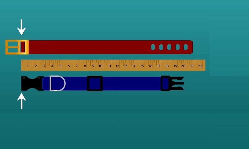 Find the Ideal Width for the Strap