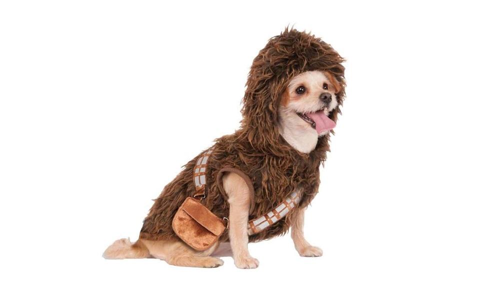 Male Star Wars Dog Names