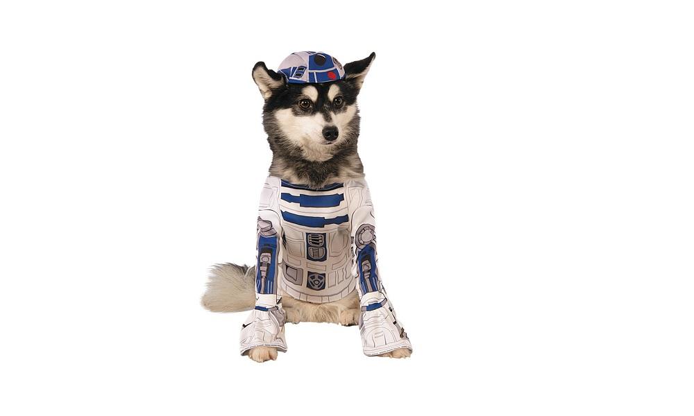 Most Popular Star Wars Dog Name