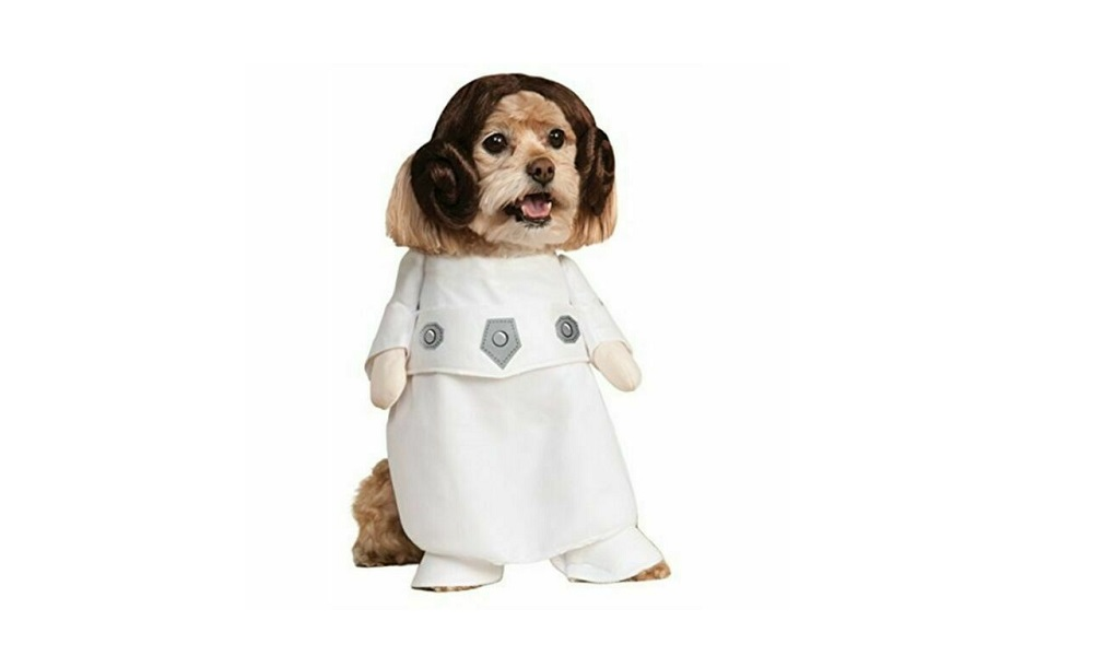 Other Star Wars Characters Dog Names