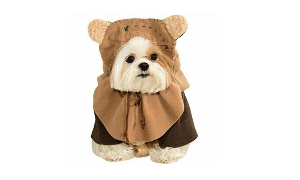 Other Star Wars Dog Names