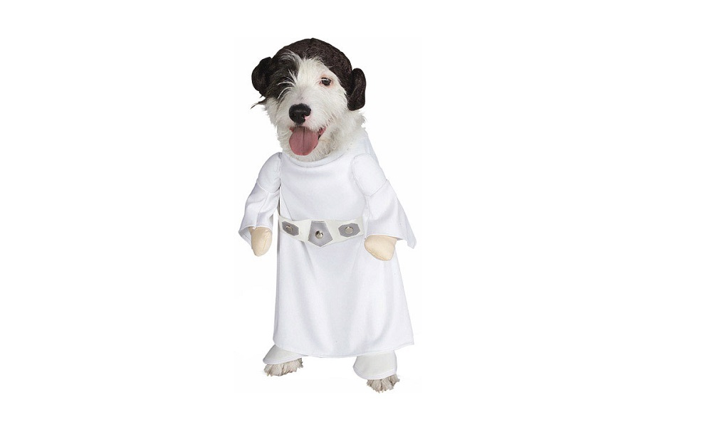 Star Wars Character Dog Names
