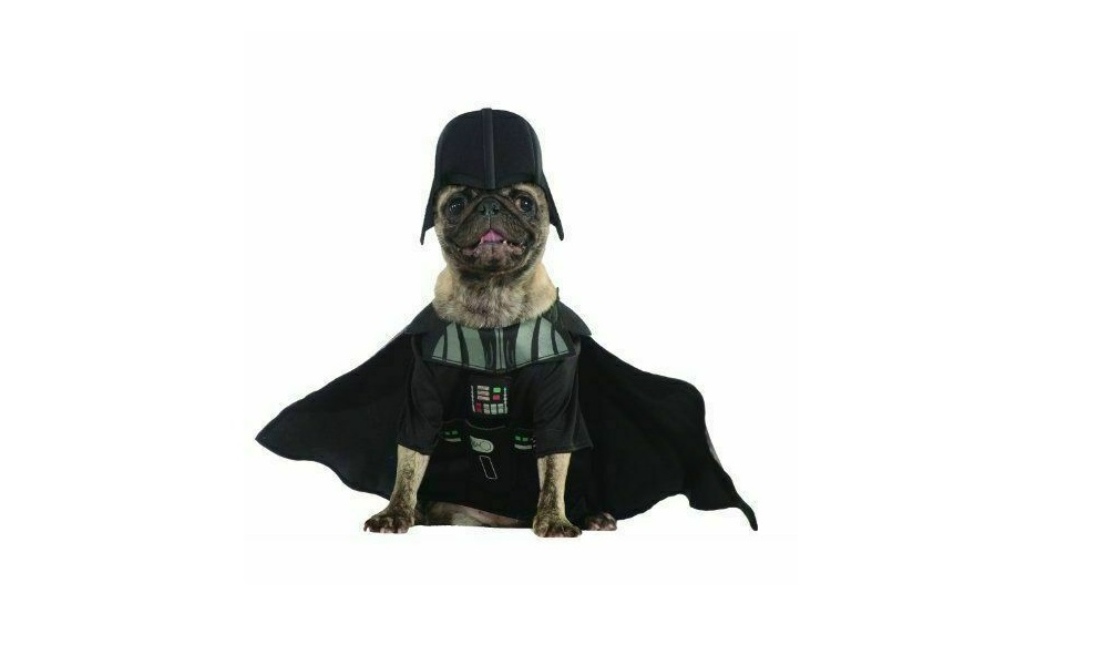 Star Wars Dog Names Inspired by the FilmRogue One
