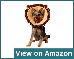 Alfie Pet Review