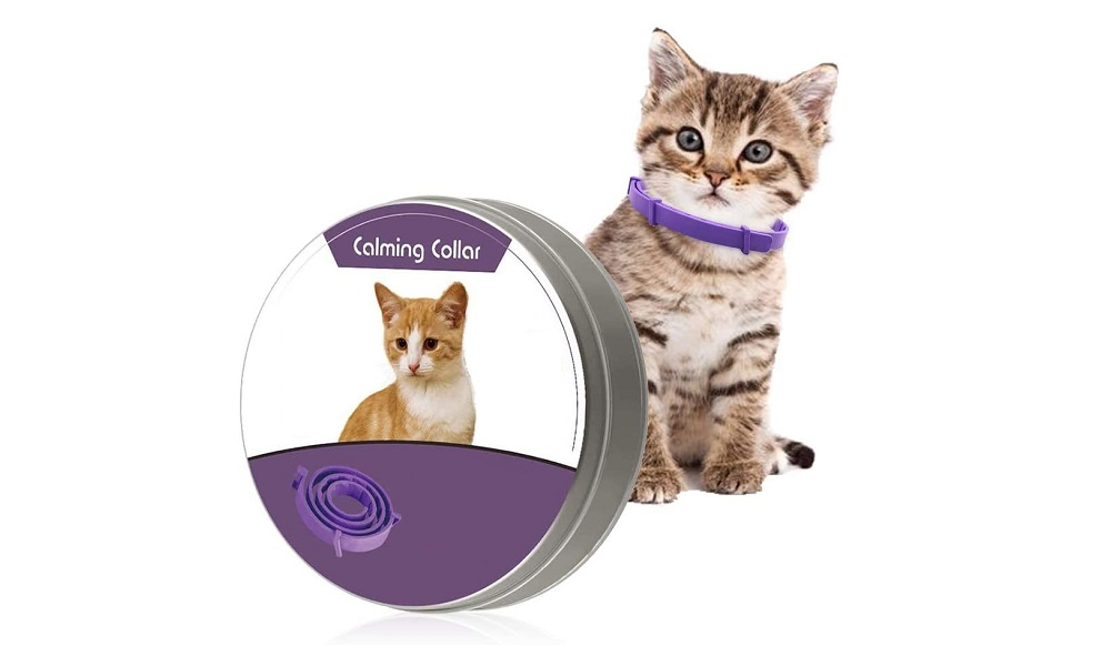 Best Calming Collars for Cats