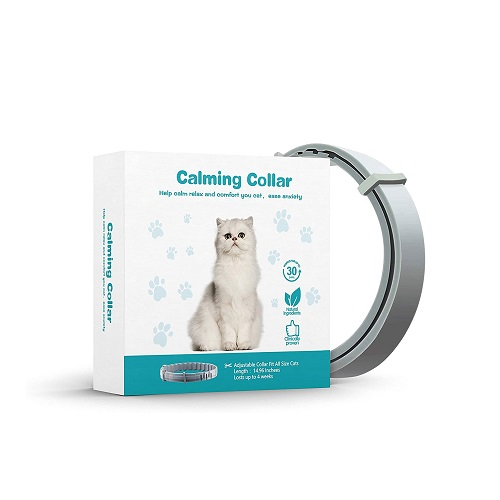 CPFK Calming Collar for Cats Review